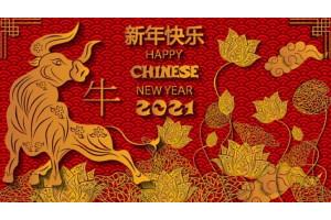 С Китайским Новым Годом!